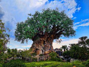 Adulting at Walt Disney World: Animal Kingdom